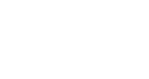 Karasin Group
